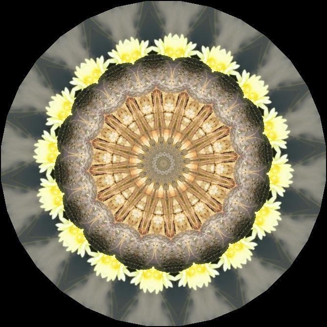 IMG_1480-1k Kaleidoscope